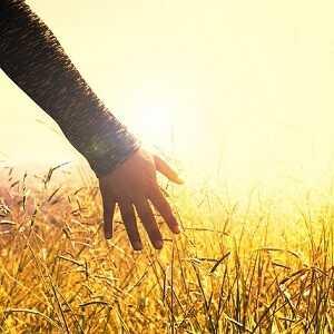 pocení dlaní co pomůže