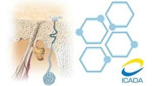 sweatstop bezpečné antiperspiranty